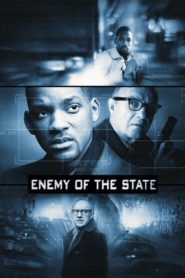 Devlet Düşmanı