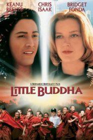 Küçük Buddha