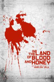 Kan ve Aşk