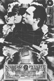 Nárcisz és Psyché