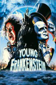 Genç Frankenstein