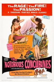 The Notorious Concubines