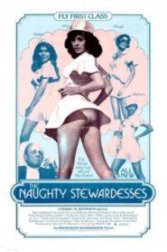 The Naughty Stewardesses