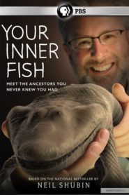 Your Inner Fish