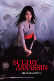 Sultry Assassin 2: Ninja Brainwash