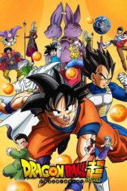 Dragon Ball Super (Cho)
