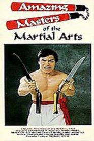 Amazing Masters Of Martial Arts