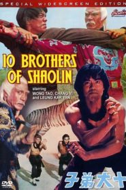 10 Brothers of Shaolin