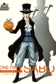 One Piece: Episode of Sabo: Bond of Three Brothers, A Miraculous Reunion and an Inherited Will