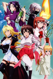 Sekirei: Pure Engagement