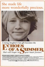 Echoes of a Summer