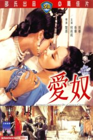 Intimate Confessions of a Chinese Courtesan