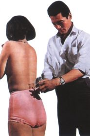 The Pervert Part 2: The Ties That Bind