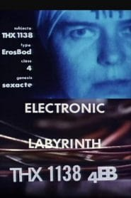 Electronic Labyrinth THX 1138 4EB