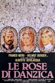 Le rose di Danzica