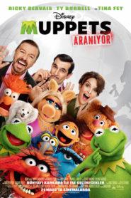 Muppets Aranıyor