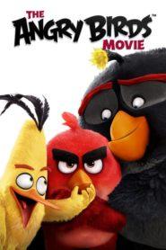 Angry Birds: Oyun Bitti