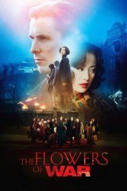 Savaşın Çiçekleri