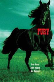 Fury: Siyah İnci