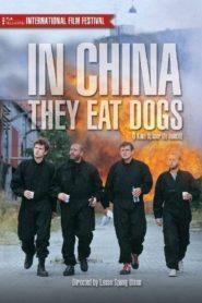 Çin'de Köpek Eti Yiyorlar