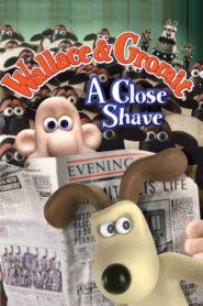 Wallace ve Gromit - Kılpayı