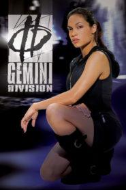 Gemini Division