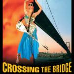 İstanbul Hatırası: Köprüyü Geçmek