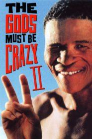 Tanrılar Çıldırmış Olmalı 2