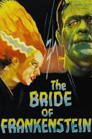 Frankenstein'in Gelini