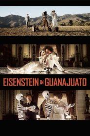 Eisenstein Meksika'da