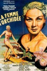 La Femme À L'Orchidée