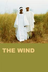 Rüzgar