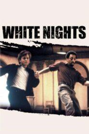 Beyaz Geceler