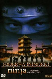 Ejderha İnindeki Ninja