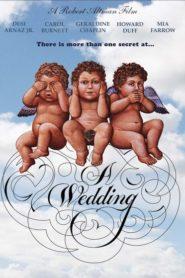 Bir Düğün