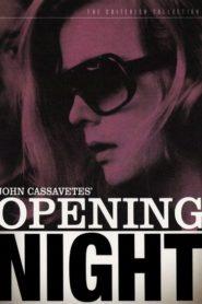 Açılış Gecesi