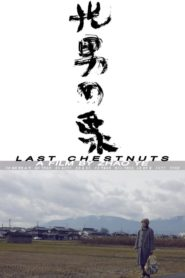 Last Chestnuts