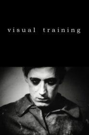 Visual Training