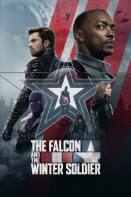 Falcon ve Kış Askeri